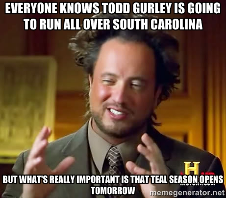 gmeme10 popular georgia football memes from recent years