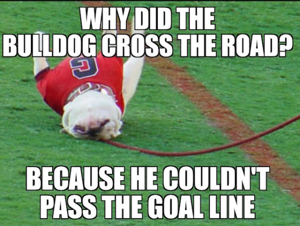 Bulldog crosses the road MEME