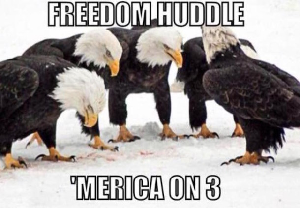Eagle Huddle MEME